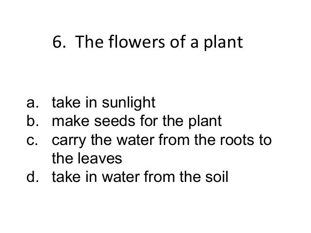 6. Seeds are important to the     plant because theya.   take in sunlightb.   take in water from the soilc.   make new pla...