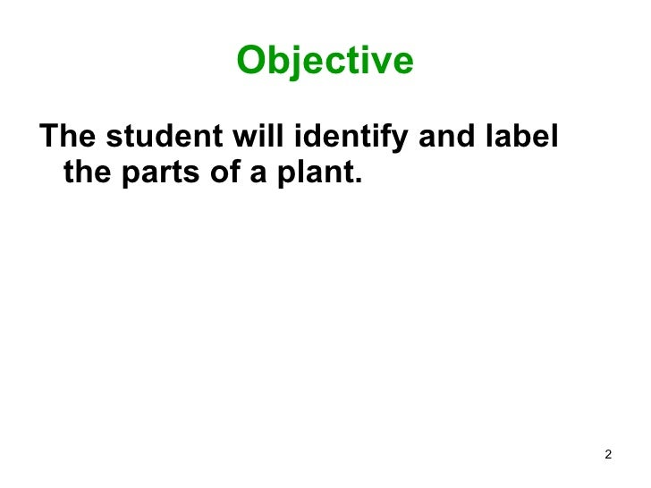 Parts of a plant ppt Slide 2