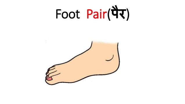 Parts of Human Body in Hindi You Must Know