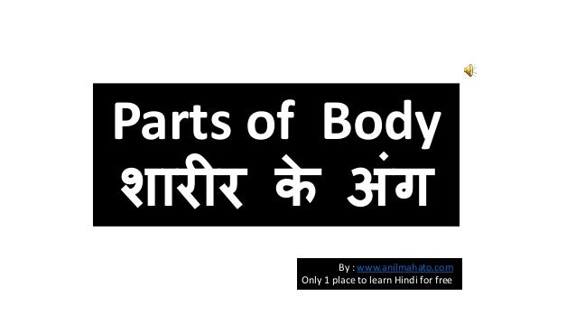 Parts of Body  शारीर के अंग  By : www.anilmahato.com  Only 1 place to learn Hindi for free