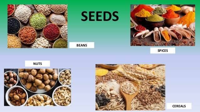 SEEDS NUTS BEANS SPICES CEREALS