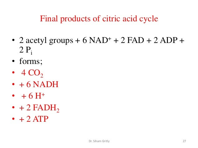 end product of tca cycle
