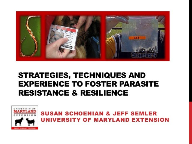 STRATEGIES, TECHNIQUES ANDEXPERIENCE TO FOSTER PARASITERESISTANCE & RESILIENCE    SUSAN SCHOENIAN & JEFF SEMLER    UNIVERS...