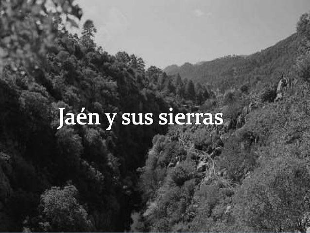 Sierras de Jaén  ¿Cuántas sierras tiene Jaén?  ¿Son todas iguales?  ¿Se encuentran todas en el mismo sitio?