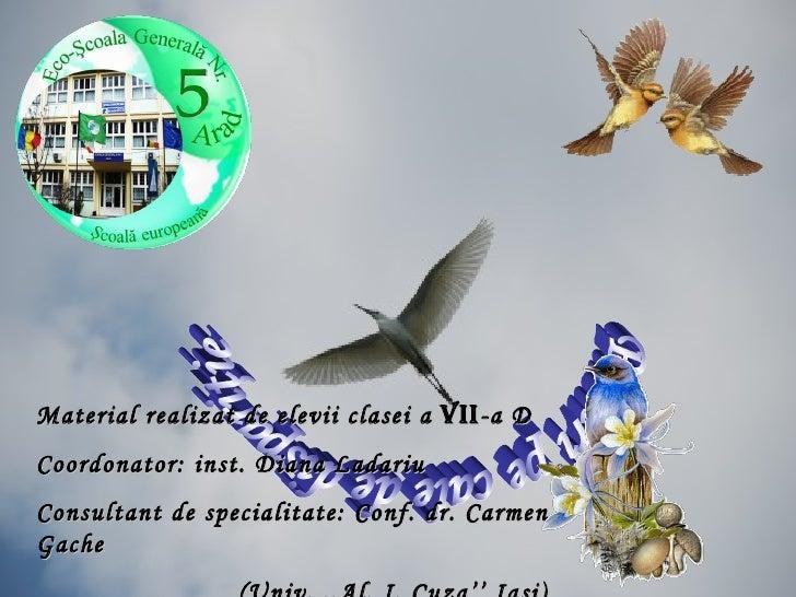 Păsări pe cale de dispariţie Material realizat de elevii clasei a  VII -a D Coordonator: inst. Diana Ladariu Consultant de...