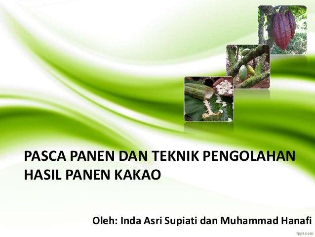 PASCA PANEN DAN TEKNIK PENGOLAHAN HASIL PANEN KAKAO Oleh: Inda Asri Supiati dan Muhammad Hanafi