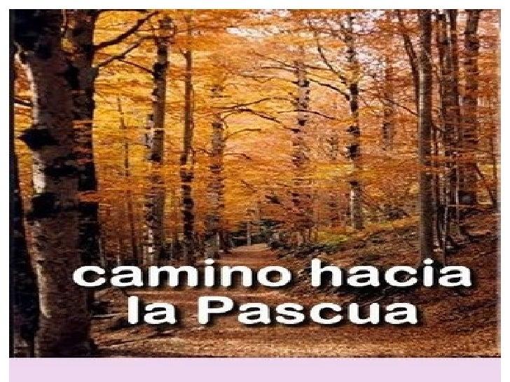 ●   VIVIR LA PASCUA     ES HACER     FLORECER     NUESTRA VIDA,     HACER FLORECER     NUESTRAS MANOS     CON FLORES DE   ...