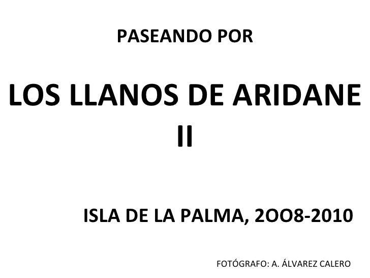PASEANDO POR LOS LLANOS DE ARIDANE II ISLA DE LA PALMA, 2OO8-2010 FOTÓGRAFO: A. ÁLVAREZ CALERO