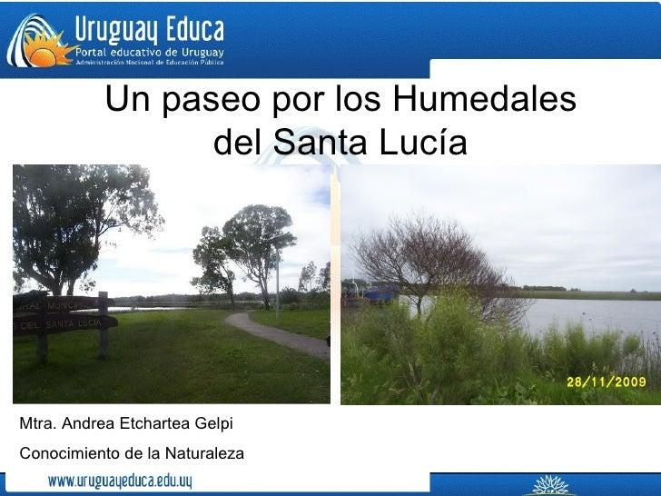 Un paseo por los Humedales                 del Santa LucíaMtra. Andrea Etchartea GelpiConocimiento de la Naturaleza