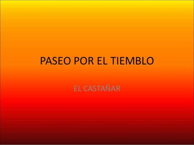 PASEO POR EL TIEMBLO EL CASTAÑAR