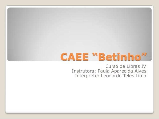 """CAEE """"Betinho"""" Curso de Libras IV Instrutora: Paula Aparecida Alves Intérprete: Leonardo Teles Lima"""