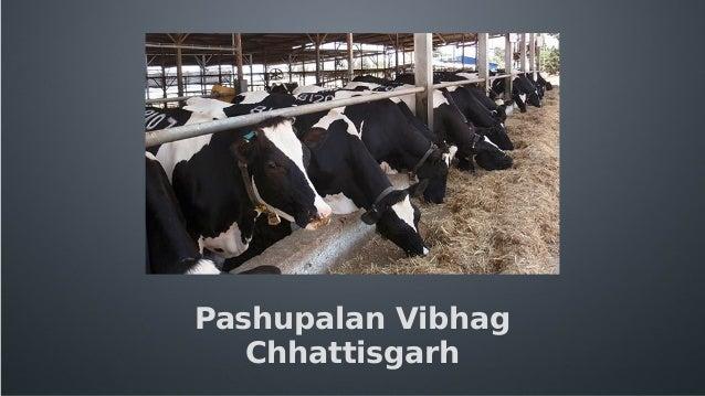 Home: Uttarakhand Government Portal, India