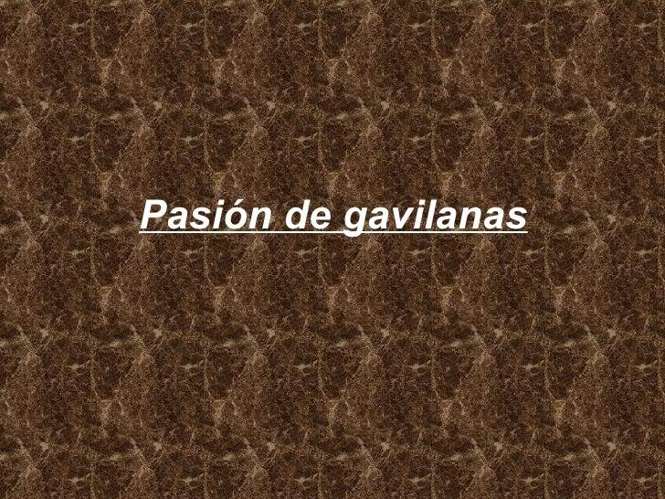 Pasión de gavilanas
