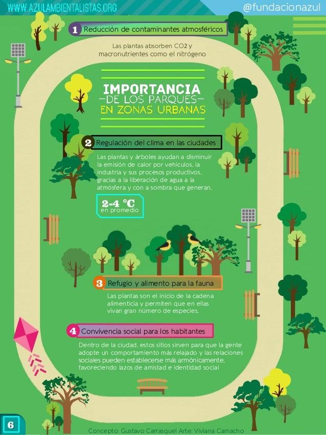 Gu a para crear un bosque urbano comunitario for Porque son importantes los arboles wikipedia