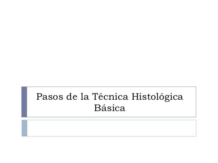 Pasos de la Técnica Histológica            Básica