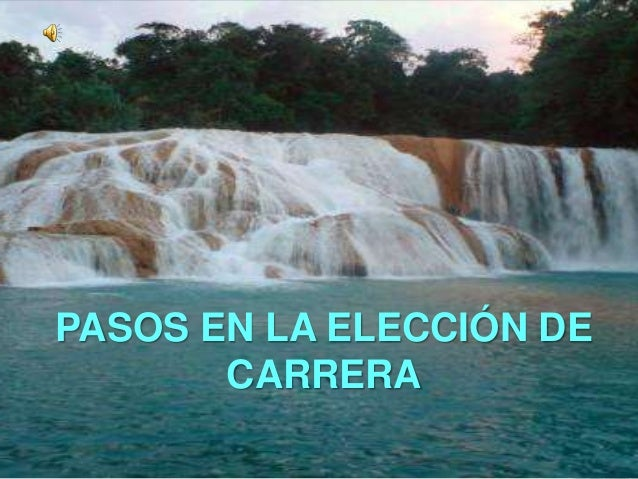 PASOS EN LA ELECCIÓN DE       CARRERA