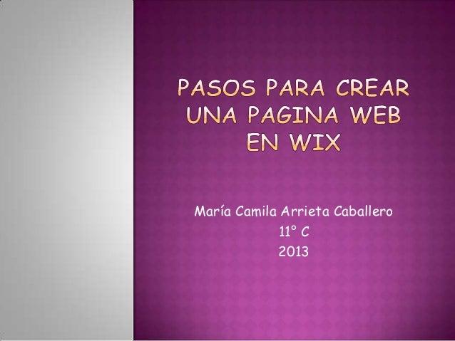 María Camila Arrieta Caballero 11° C 2013
