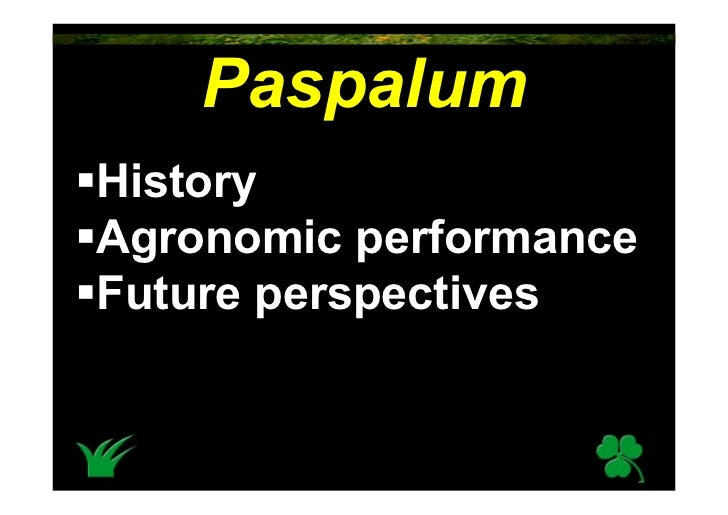 Paspalum History Agronomic performance Future perspectives