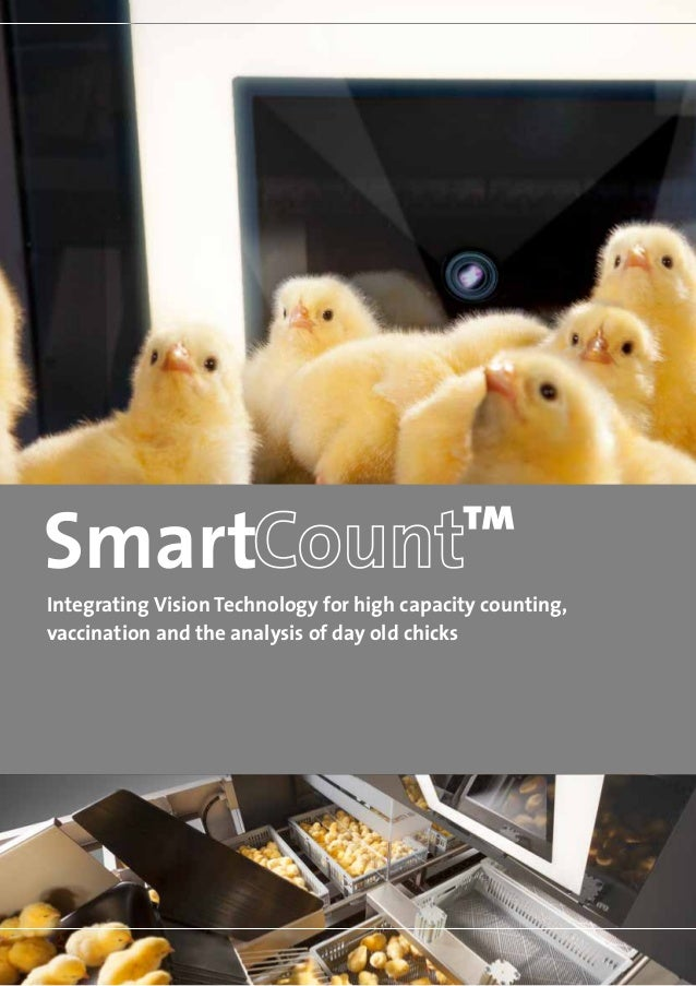 Integrating Vision Technology for high capacity counting,vaccination and the analysis of day old chicks