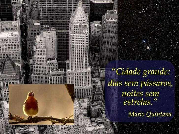 """""""Cidade grande:dias sem pássaros,    noites sem     estrelas.""""     Mario Quintana"""