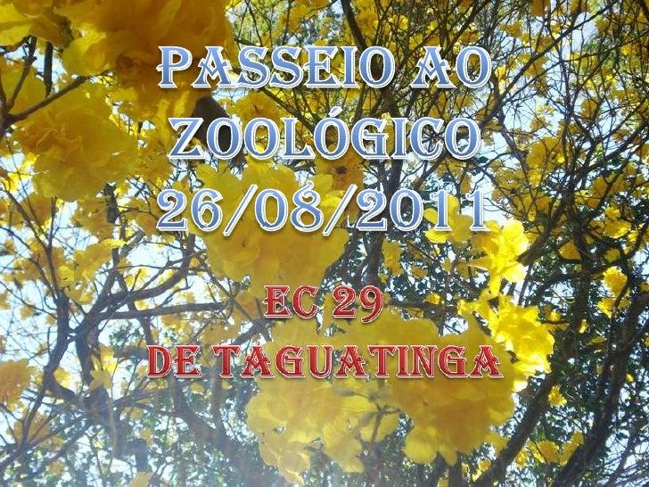 PASSEIO AO ZOOLÓGICO26/08/2011<br />EC 29 <br />DE TAGUATINGA<br />