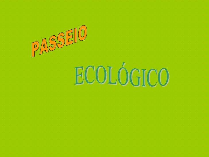 PASSEIO  ECOLÓGICO