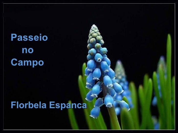 <ul><li>Passeio  </li></ul><ul><li>no </li></ul><ul><li>Campo </li></ul><ul><li>Florbela Espanca </li></ul>