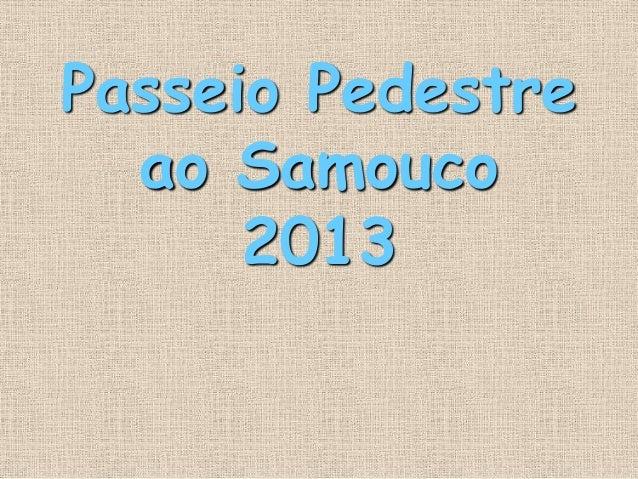 Passeio Pedestreao Samouco2013
