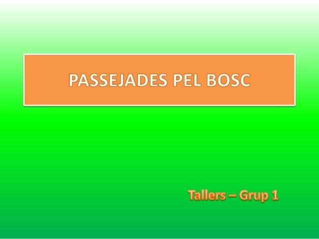 PASSEJADES PEL BOSC  Tallcrs - Grup 1