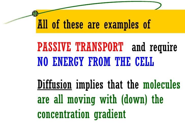 Passive Transport  Example Of Passive Transport