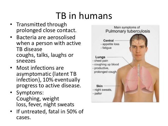 an analysis of the infection caused by bacteria in tuberculosis Infections that resemble tuberculosis (a group of bacteria that includes tuberculosis bacteria) exist many of them can cause laboratory analysis of.