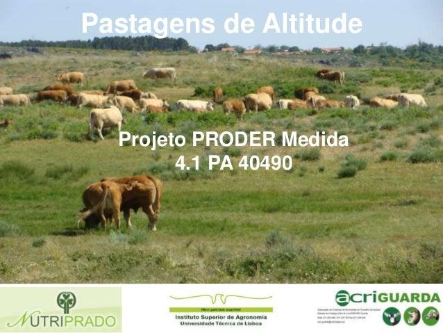 Pastagens de Altitude  Projeto PRODER Medida 4.1 PA 40490