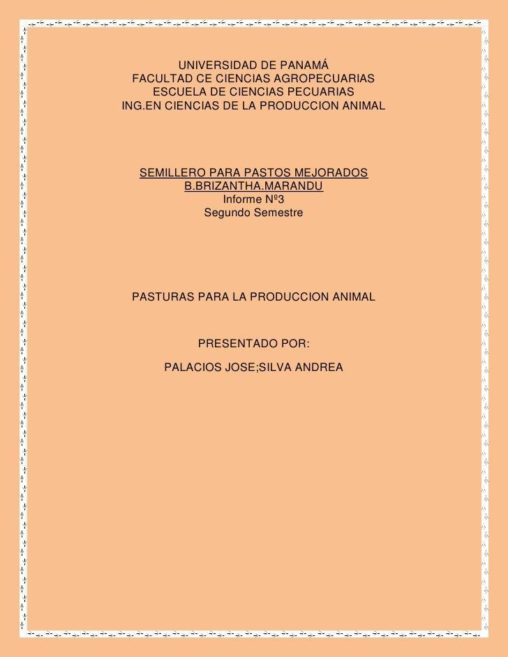 UNIVERSIDAD DE PANAMÁ   FACULTAD CE CIENCIAS AGROPECUARIAS      ESCUELA DE CIENCIAS PECUARIAS ING.EN CIENCIAS DE LA PRODUC...