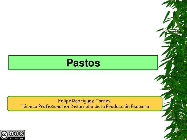 Pastos                 Felipe Rodríguez Torres.Técnico Profesional en Desarrollo de la Producción Pecuaria