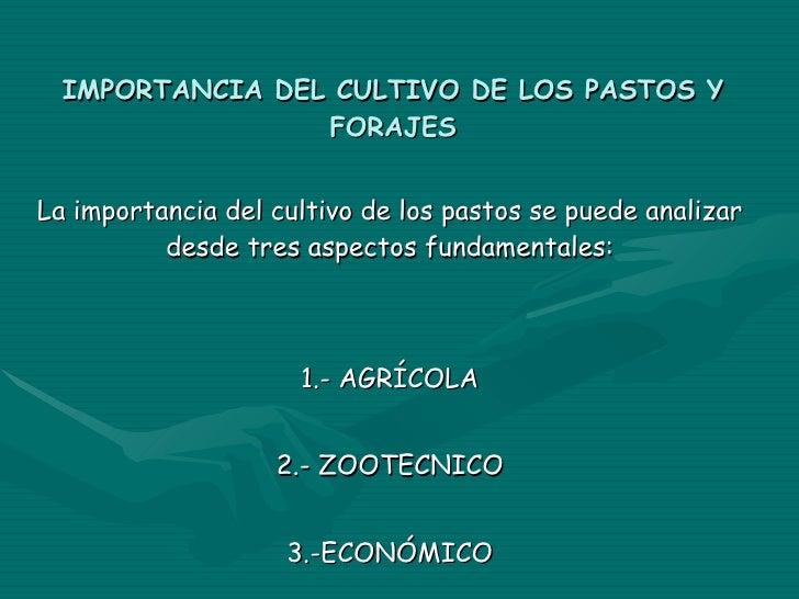 IMPORTANCIA DEL CULTIVO DE LOS PASTOS Y FORAJES La importancia del cultivo de los pastos se puede analizar desde tres aspe...