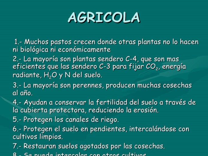 AGRICOLA 1.- Muchos pastos crecen donde otras plantas no lo hacen ni biológica ni económicamente 2.- La mayoría son planta...