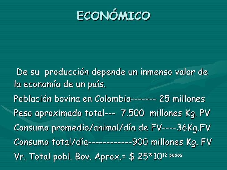 ECONÓMICO De su  producción depende un inmenso valor de la economía de un país. Población bovina en Colombia------- 25 mil...