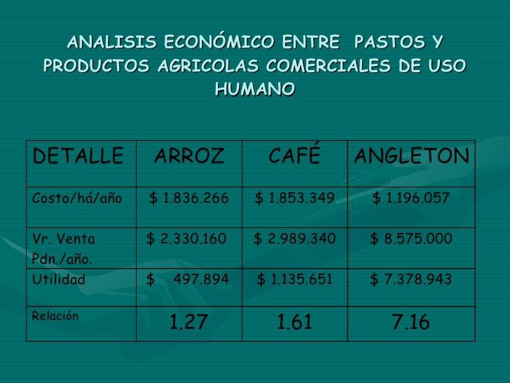 ANALISIS ECONÓMICO ENTRE  PASTOS Y PRODUCTOS AGRICOLAS COMERCIALES DE USO HUMANO