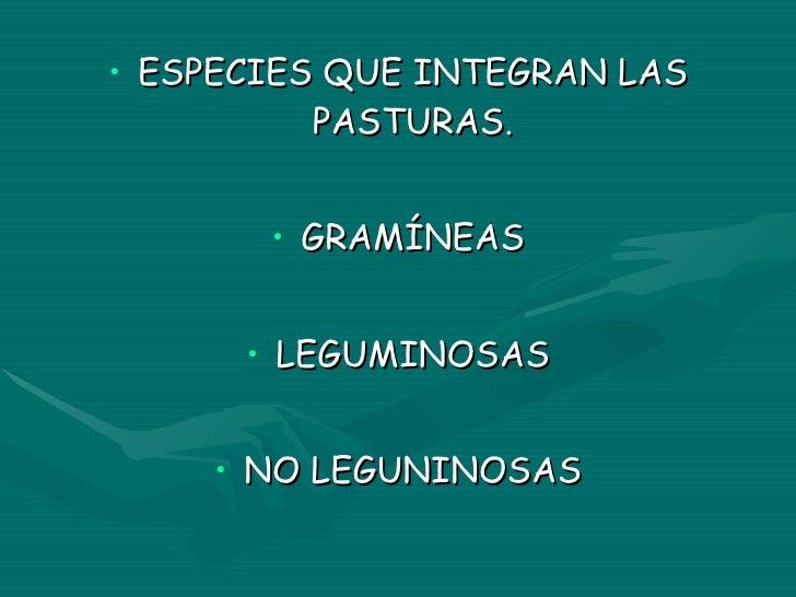 <ul><li>ESPECIES QUE INTEGRAN LAS PASTURAS. </li></ul><ul><li>GRAMÍNEAS </li></ul><ul><li>LEGUMINOSAS </li></ul><ul><li>NO...