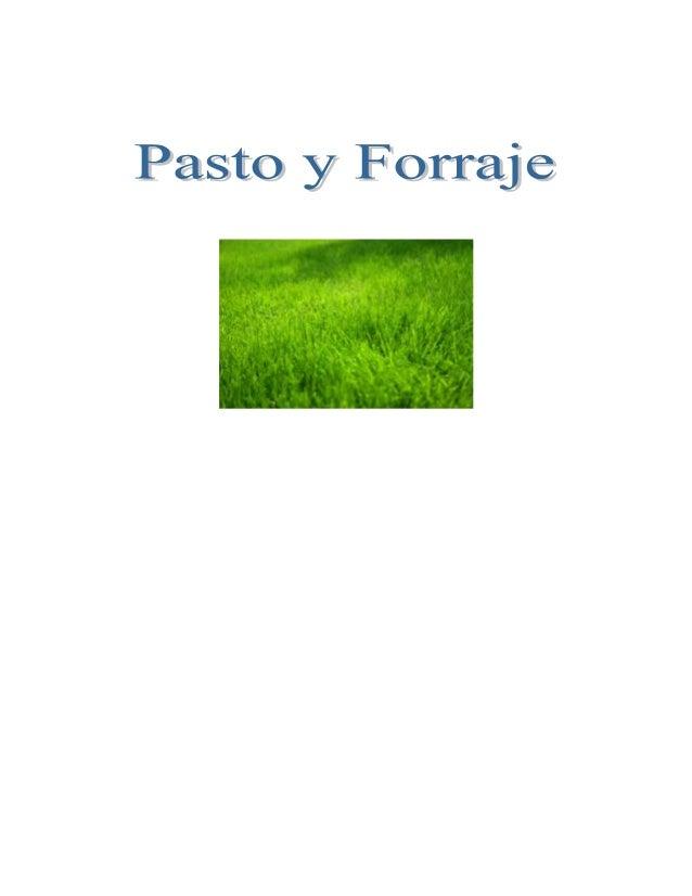 INTRODUCCIONLos pastos constituyen la fuente de alimentación mas económica de la que dispone unproductor para mantener a s...