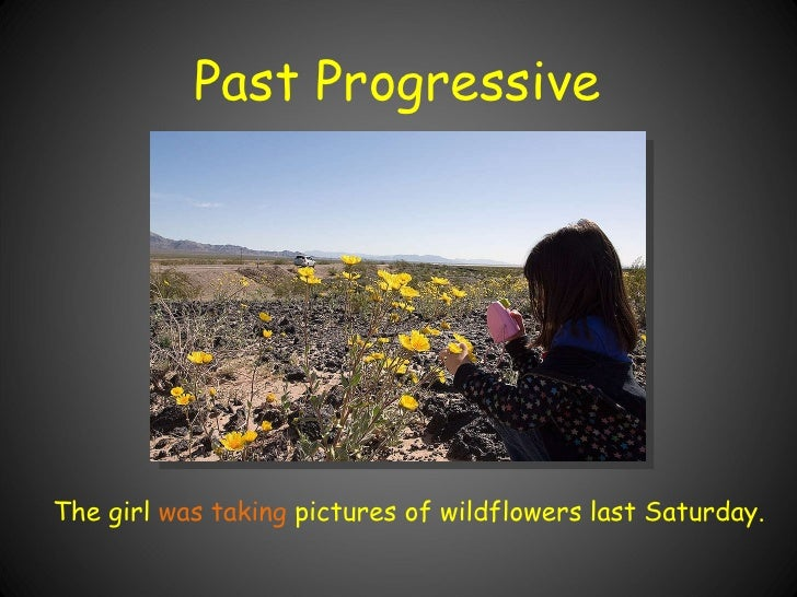 Past Progressive The girl  was taking  pictures of wildflowers last Saturday.
