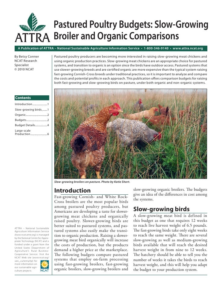 Pastured Poultry Budgets: Slow-Growing                                           Broiler and Organic Comparisons   A Publi...