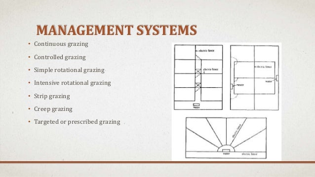 Pasture And Grazing Management