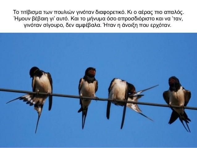 Μεγάλος οικοδεσπότης πουλί