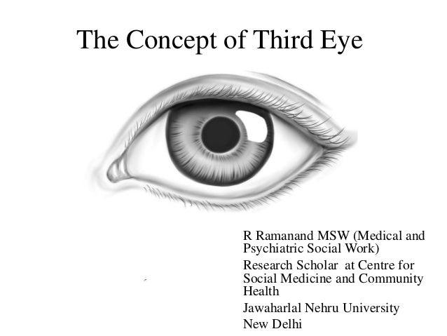 Shark Parietal Eye Diagram Block And Schematic Diagrams