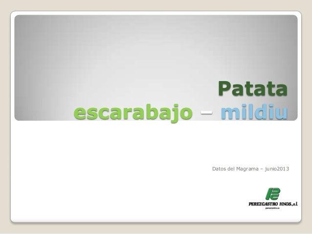 Patataescarabajo – mildiuDatos del Magrama – junio2013