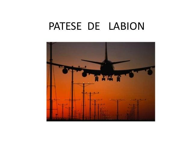 PATESE DE LABION
