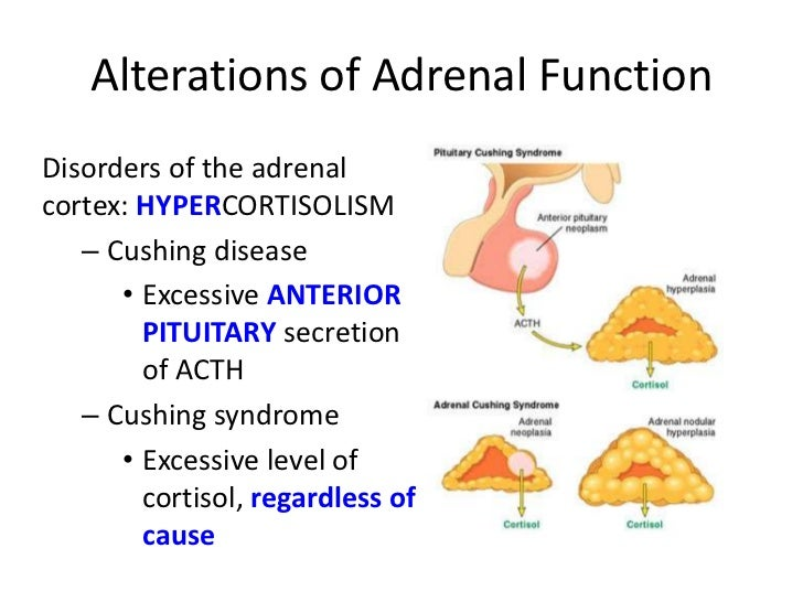 Adrenal Hyperfunction Natural Treatment