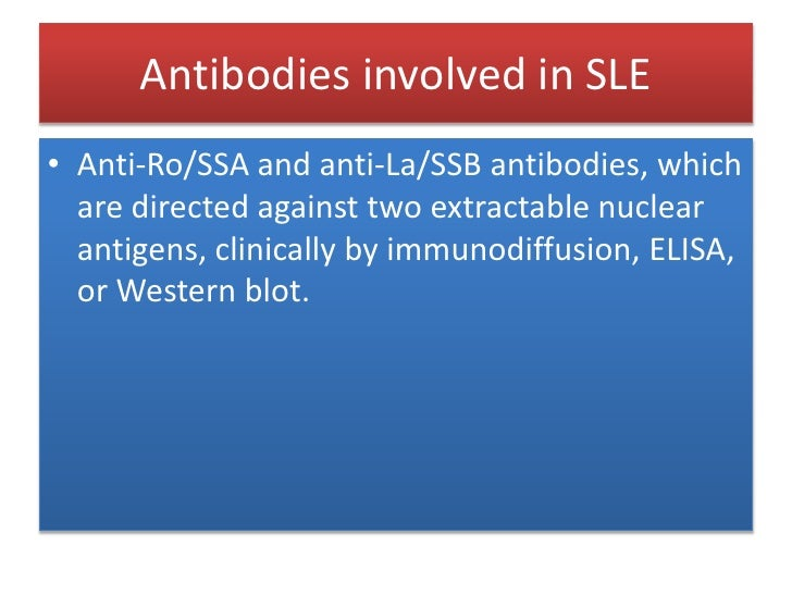 Antibodies involved in SLE<br />Ribonucleoprotein (RNP) is a nucleoprotein that contains RNA, i.e. it is an association th...
