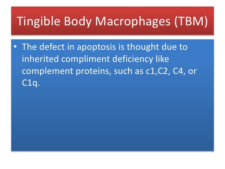 Tingible Body Macrophages (TBM)<br />A Tingible body macrophage is a type of macrophage -- large phagocytic cells predomin...